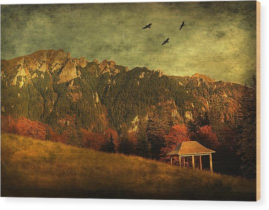 Red Mountain Wood Print by Endre Fulop