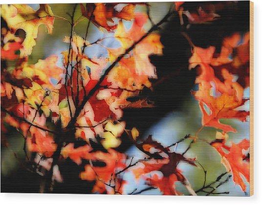 Red Oak Leaves In Fall Wood Print by Linda Phelps