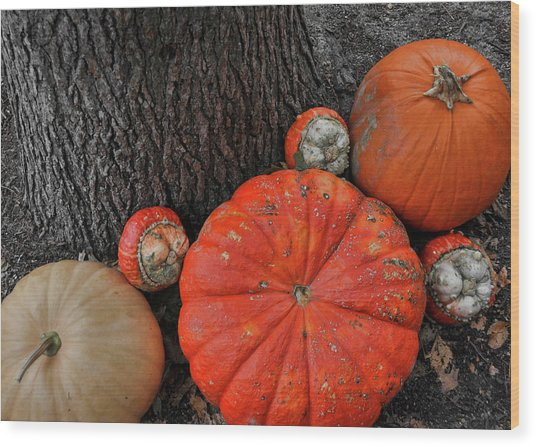 Red Orange Wood Print by JAMART Photography