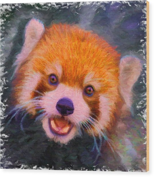 Red Panda Cub Wood Print