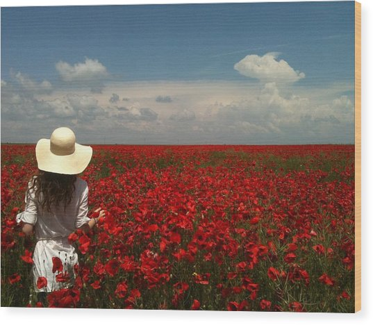Red Poppies And Lady Wood Print