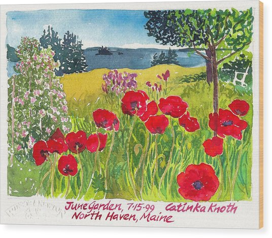 Red Poppies Coastal Maine Island June Garden North Haven  Wood Print by Catinka Knoth