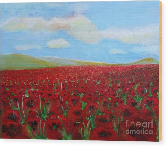 Red Poppies In Remembrance Wood Print