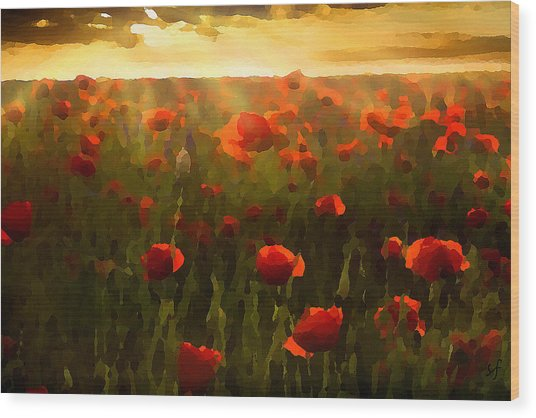Wood Print featuring the digital art Red Poppies In The Sun by Shelli Fitzpatrick