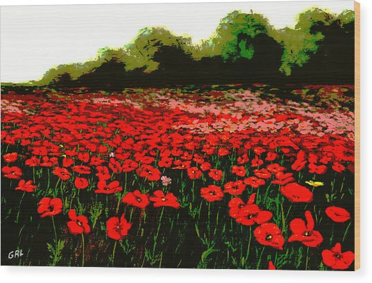 Red Poppies Landscapes Flowers Emerald Isle Multimedia Fine Art Wood Print by G Linsenmayer