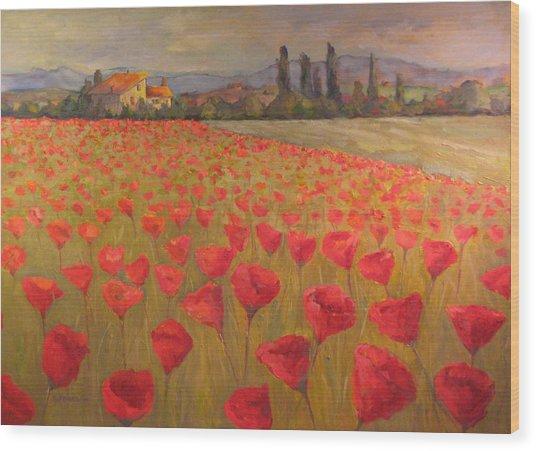 Red Poppy Field Wood Print by Sam Pearson