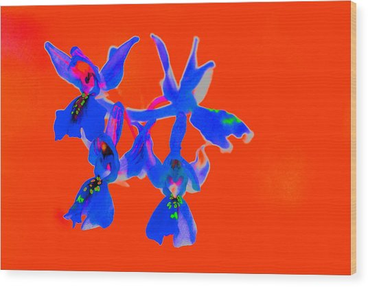 Red Provence Orchid Wood Print