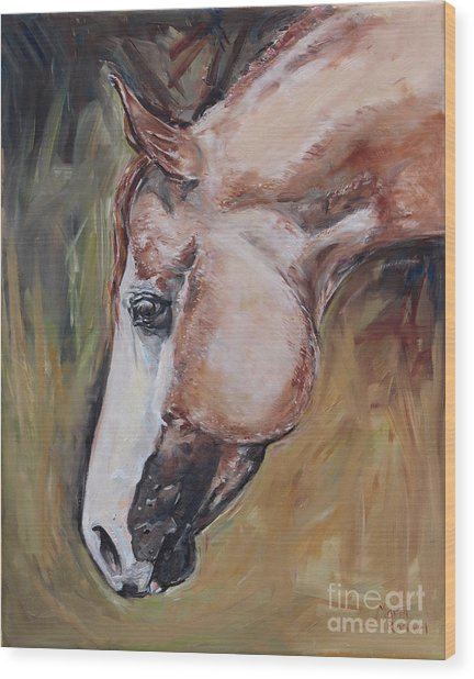 Red Roan Horse Wood Print