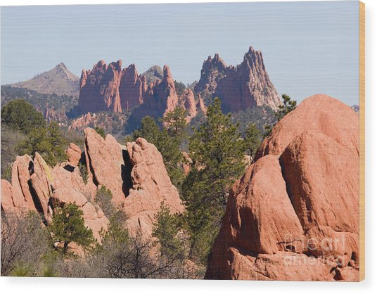 Red Rock Canyon Open Space Park And Garden Of The Gods Wood Print