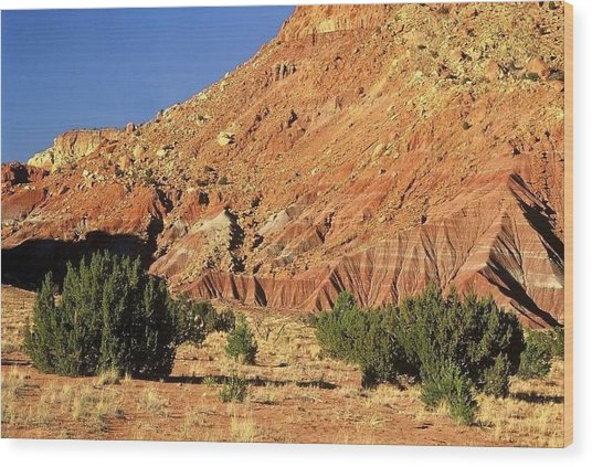 Red Rock New Mexico Wood Print