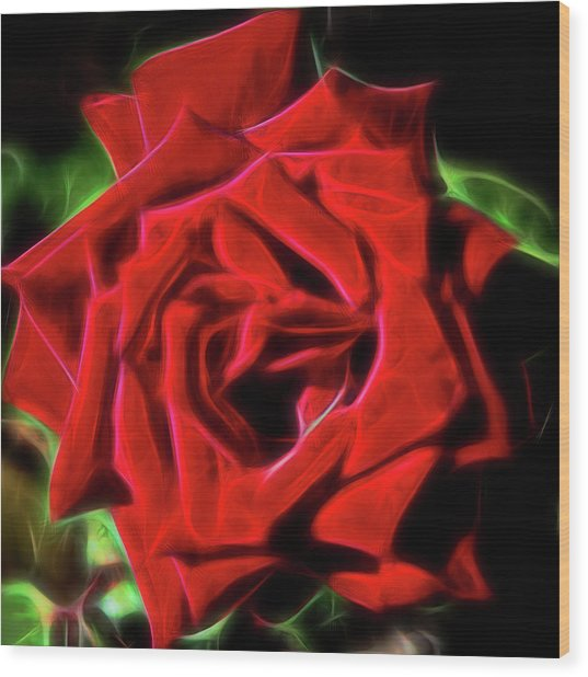 Red Rose 1a Wood Print