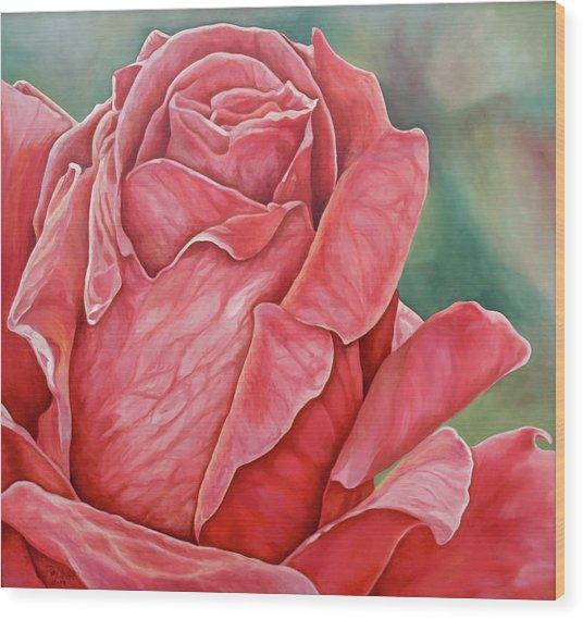 Red Rose 93 Wood Print