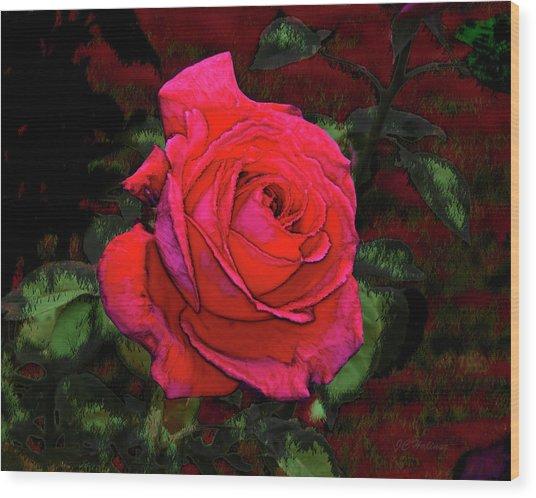 Red Rose Wood Print by Joe Halinar