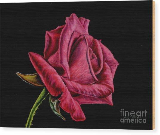 Red Rose On Black Wood Print