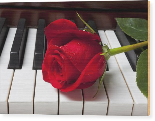 Red Rose On Piano Keys Wood Print