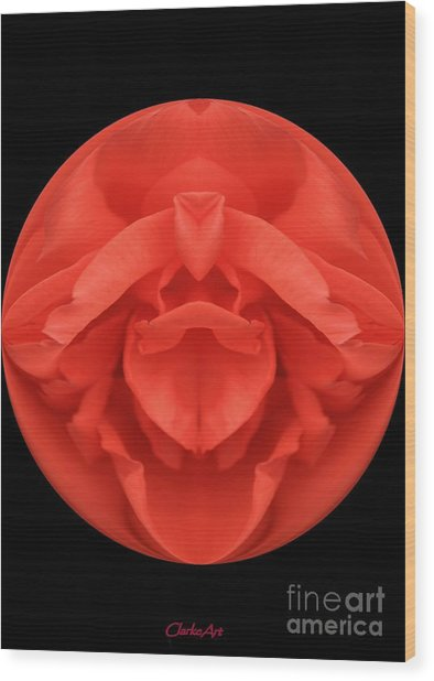 Red Rose Sphere Wood Print