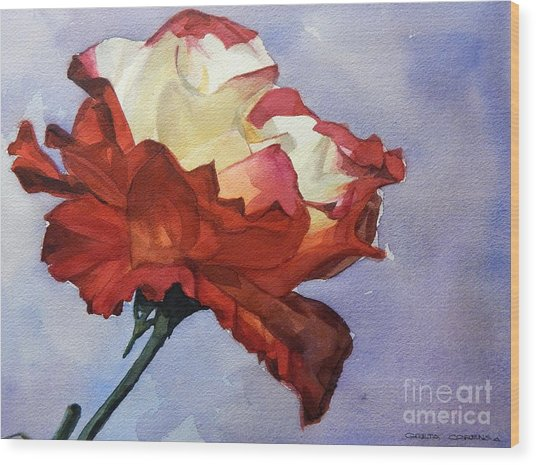 Watercolor Of A Red And White Rose On Blue Field Wood Print