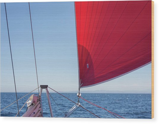 Wood Print featuring the photograph Red Sail On A Catamaran by Clare Bambers
