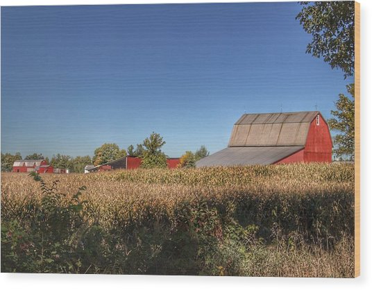 0042 - Red Saltbox Barn Wood Print