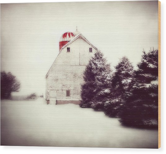 Red Silo Wood Print