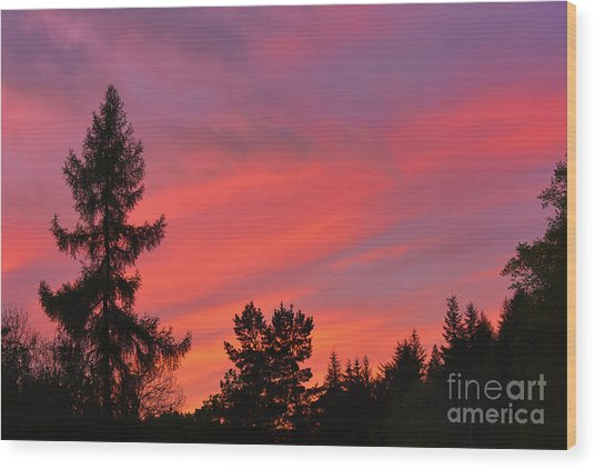 Red Sky At Night. Wood Print by Stan Pritchard