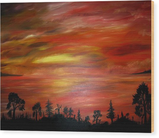 Red Sky Delight Wood Print by Michael Schedgick