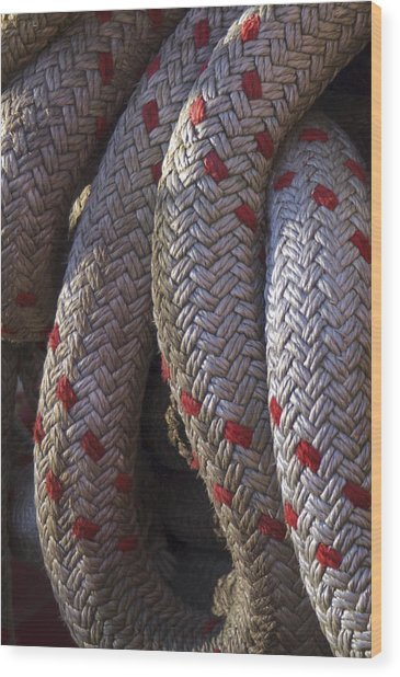 Red Speckled Rope Wood Print