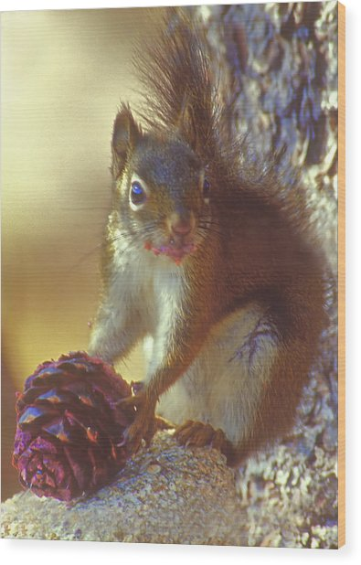 Red Squirrel With Pine Cone Wood Print