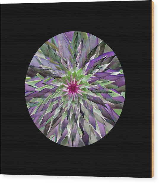Red Star Thistle Kaleidoscope Wood Print