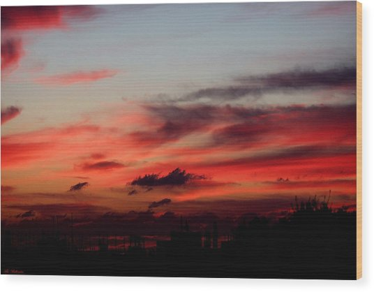 Red Sunset Wood Print by Arik Baltinester