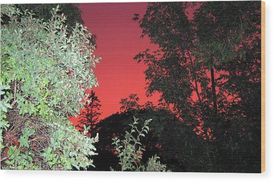 Red Sunset Wood Print