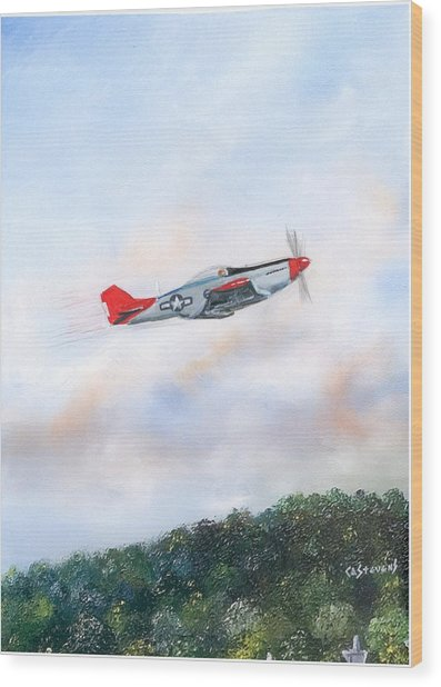 Red Tails Wood Print