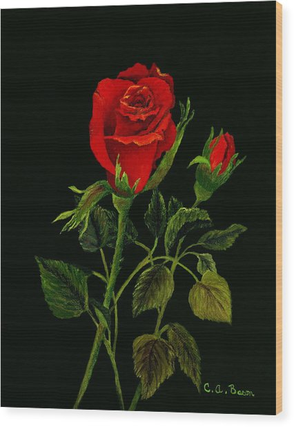 Red Tango Rose Bud Wood Print