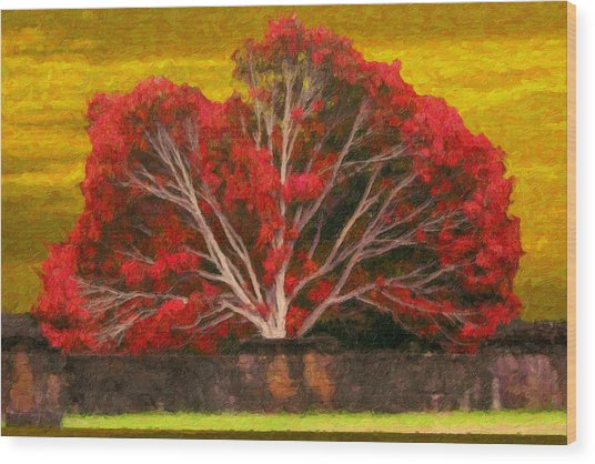 Red Thai Tree Wood Print