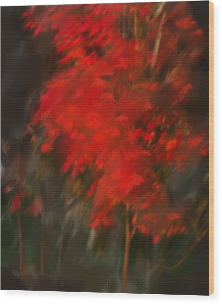 Red Tree Wood Print by Claire Whitehead