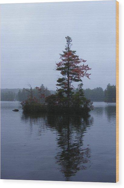 Red Tree Island Wood Print by Alison Heckard