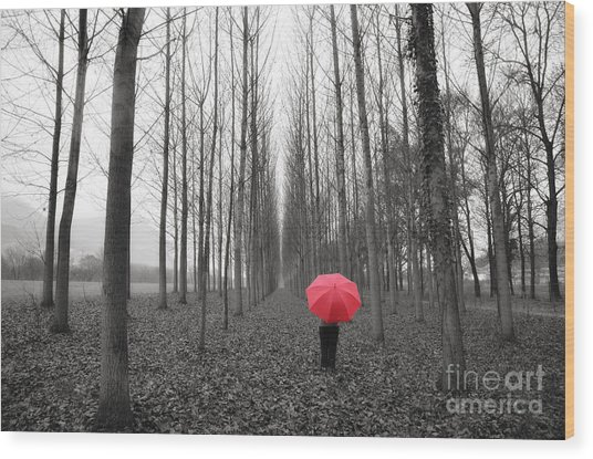 Red Umbrella In An Allee Wood Print