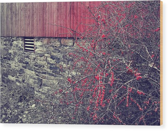 Red Winter Wood Print by JAMART Photography