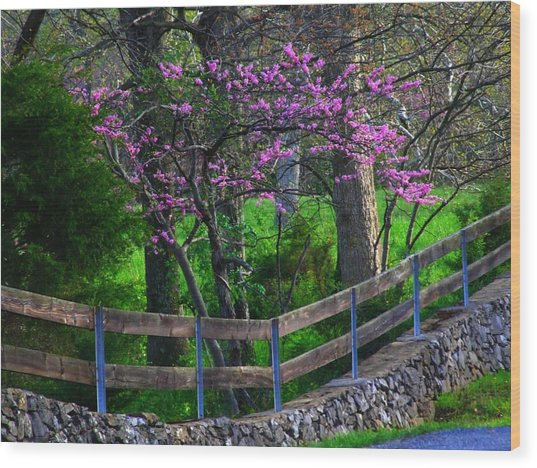 Redbud Corner Wood Print by Michael L Kimble
