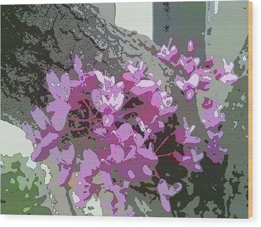Redbud Tree Wood Print