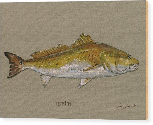 Redfish Painting  Wood Print