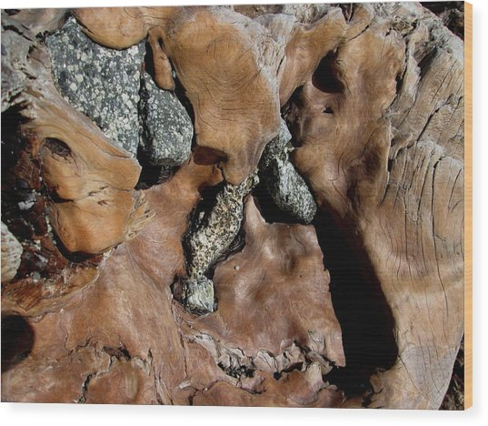 Redwood Stone Collage Wood Print