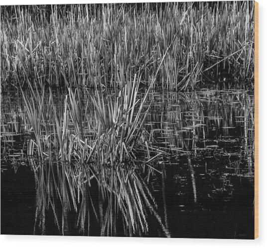 Reeds Reflection  Wood Print