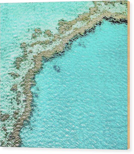 Reef Textures Wood Print