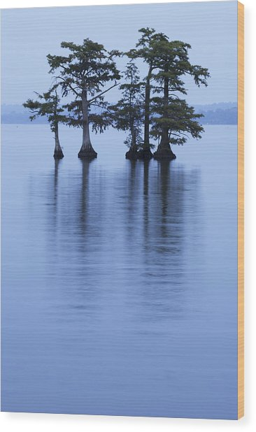 Reelfoot Reflections Wood Print by Eric Foltz