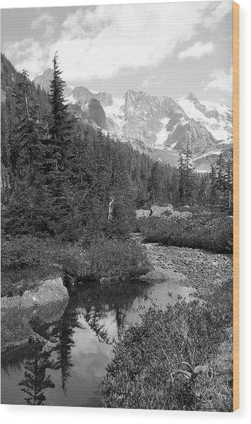Reflected Pine Wood Print
