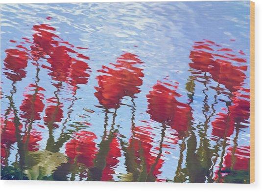 Reflected Tulips Wood Print