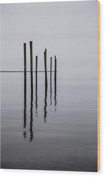 Reflecting Poles Wood Print
