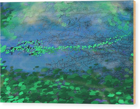 Reflecting Pond Wood Print
