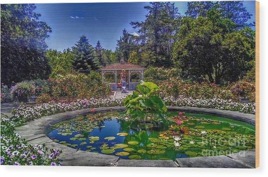 Reflecting Pool At Colonial Park Wood Print